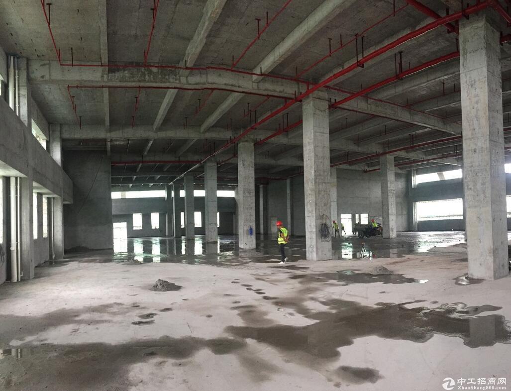 佛山顺德5000m²框架厂房出租 层高9.6