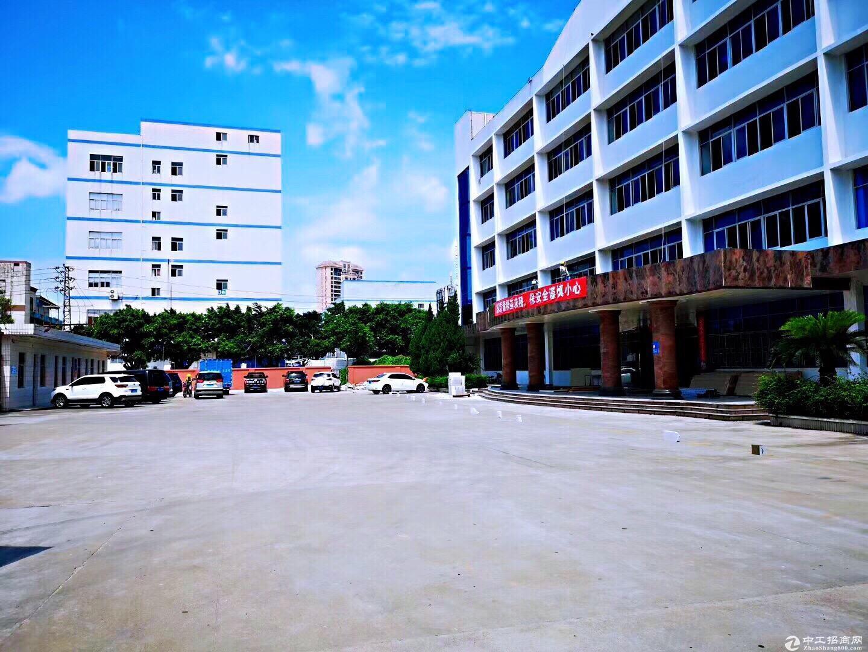 龙岗同乐工业园1200平方厂房仓库出租,大小可分租
