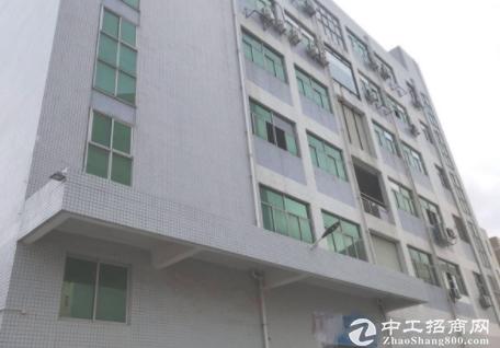 天安云谷附近3楼1000平,还价就租,电商,仓库,加工。