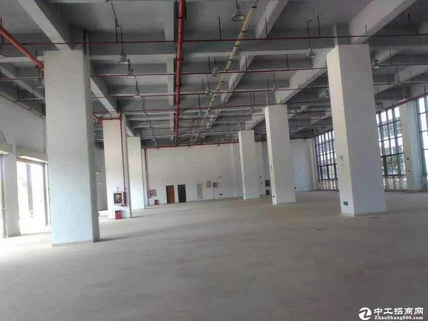 厚街镇宝屯村靠近道滘标准物流仓库16500平方整栋出租,