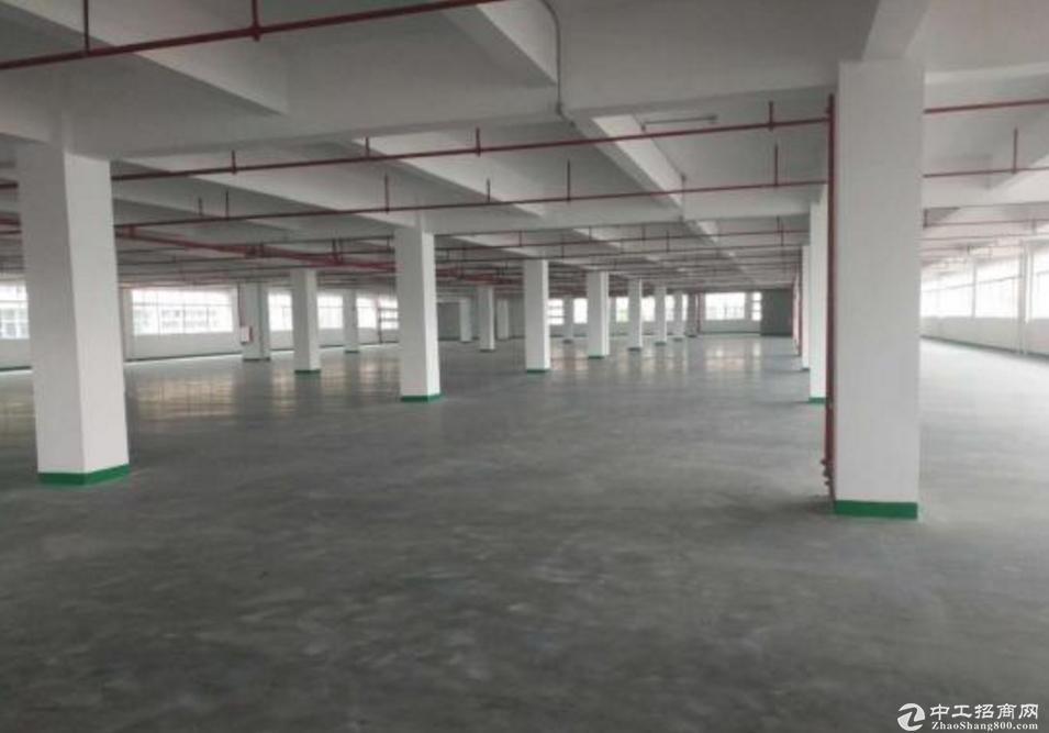 横岗安良工业园11000平红本厂房仓库可分租,全新玻璃幕墙