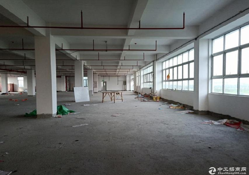 广东韶关工业园5000平标准厂房仓库出租 适合各行业 可进出大车-图6