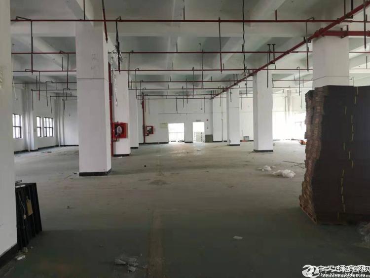 龙华清湖地铁站附近新出8000平带装修隔间办公室厂房出租大小可分