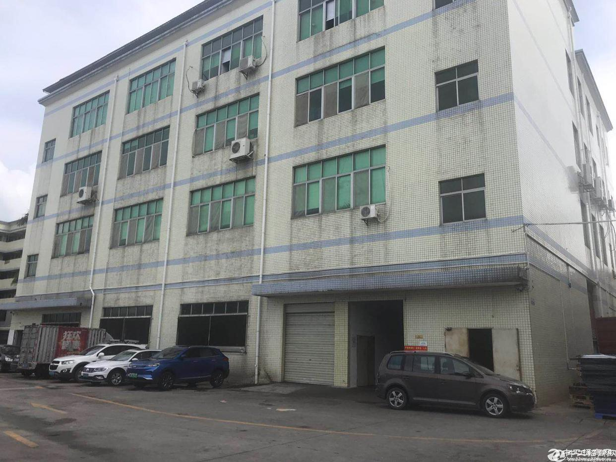 坪山比亚迪旁 独栋仓库厂房1-3层2600平方 便宜出租