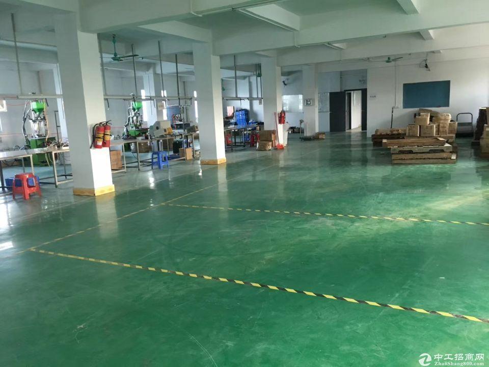 广州市新塘独院标准厂房一楼二楼2500平方出租,带装修,形象好