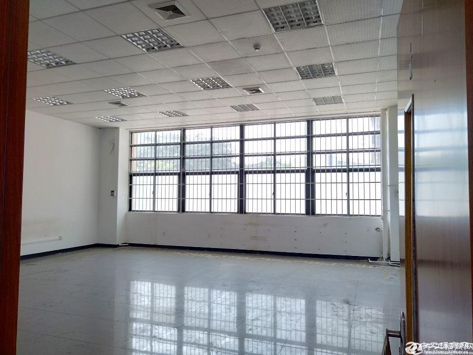 新出番禺大道边、靠高速、东环街道标准一楼物流仓库2410招租可分