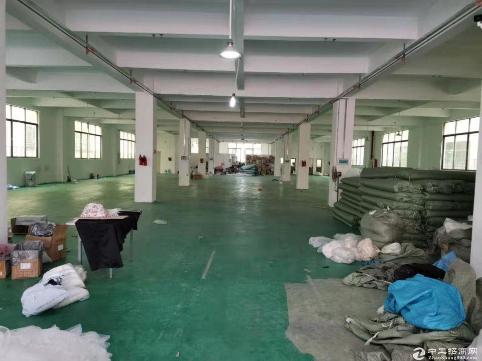番禺钟村工业区原房东标准厂房2400平方 可分租可明包