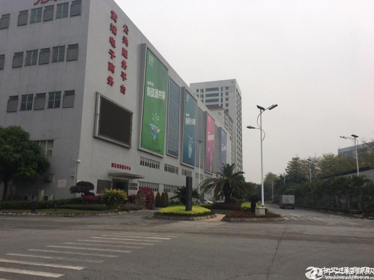 黄埔区文冲街道科技产业园6570平方出租,大小面积可分租
