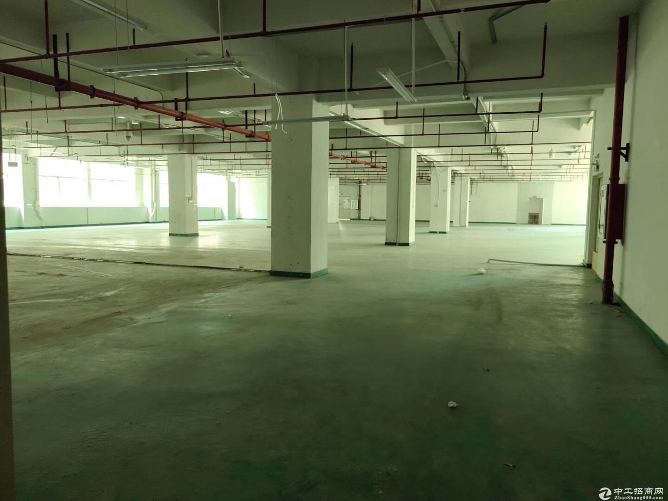 石岩南光高速料坑出口物流仓库厂房整栋出租7800平米