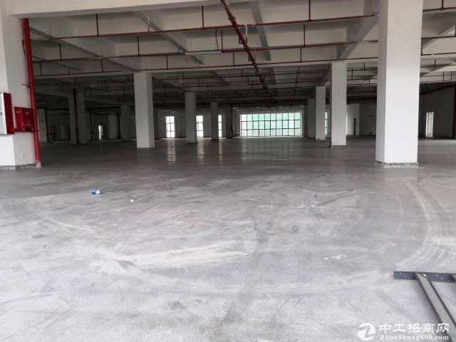 黄埔开发区原房东标准厂房1251平出租