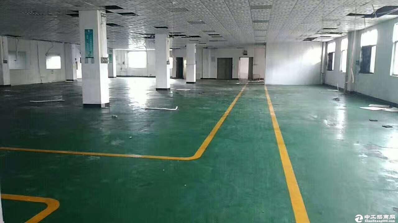 布吉大靓工业区楼上1300平带装修厂房出租