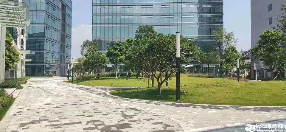 黄埔独栋楼上931平方高新研发花园式厂房出租