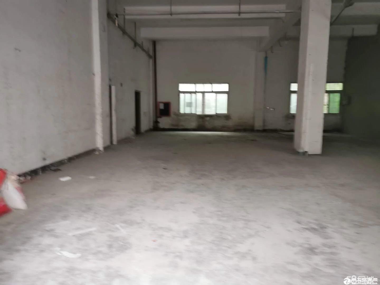 南山区西丽九祥岭一楼380平仓库出租
