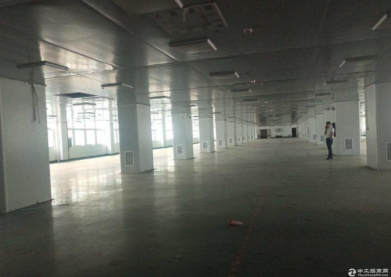 龙华清湖大工业区2500平厂房出租