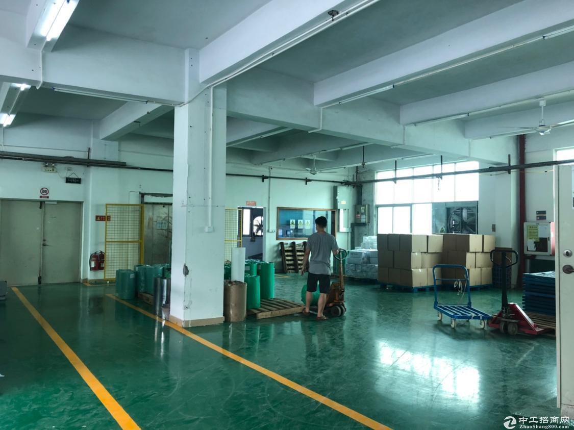 龙华大浪19.9元一平仓库2200平招租,面积大小200平起租。