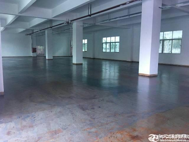 福永桥头原房东厂房出售6888平靠宝安大道