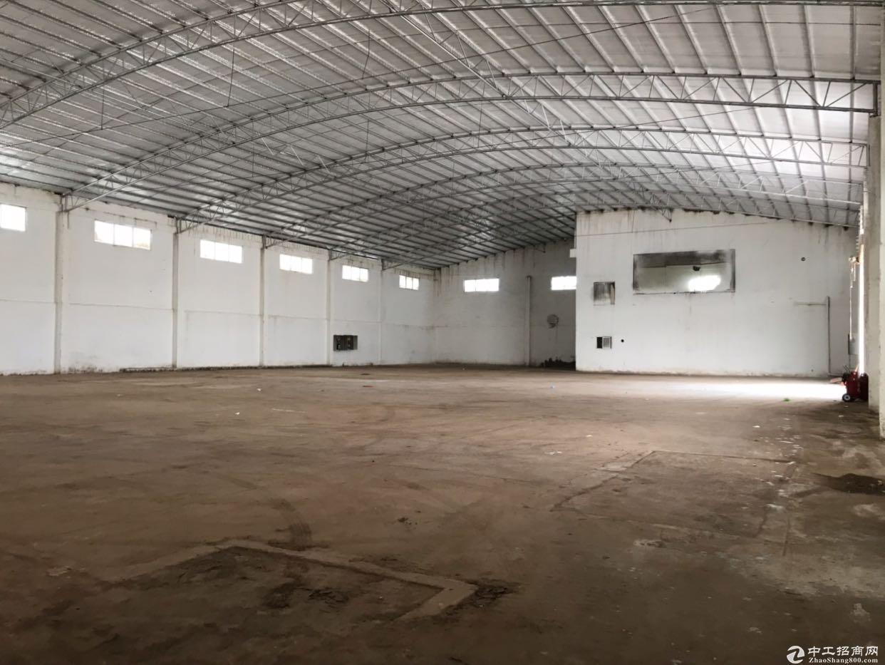 里水镇原房东出租带空地2000平方单一层滴水9米独院厂房2400平方-图3