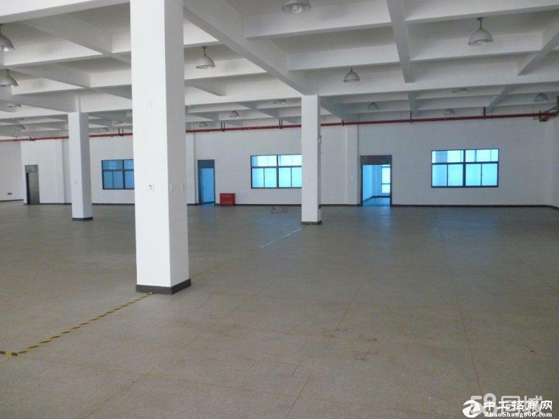 龙岗区龙东一楼1100平米厂房仓库出租!空地大可分租