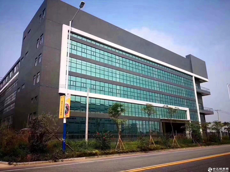 坂田iIOT产业区5000平厂房仓库出租精装修有红本大可分租;