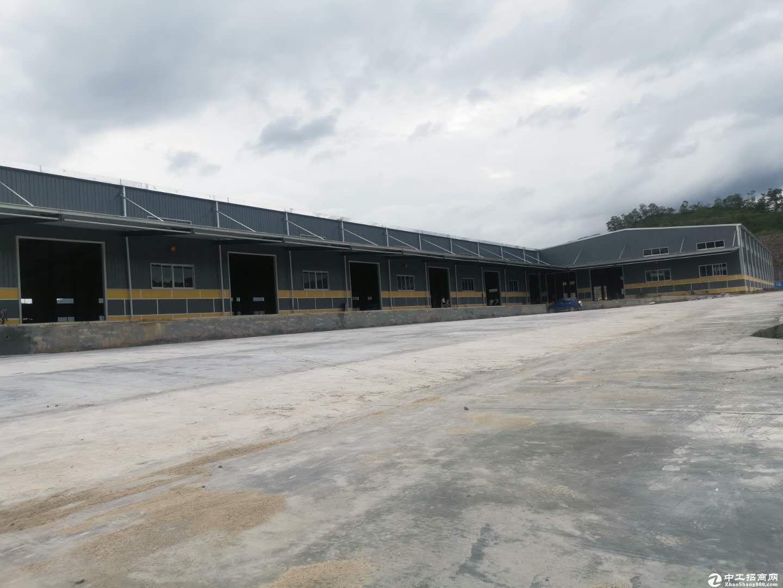 靠近坪山大亚湾专业物流仓库出租总面积15000平米