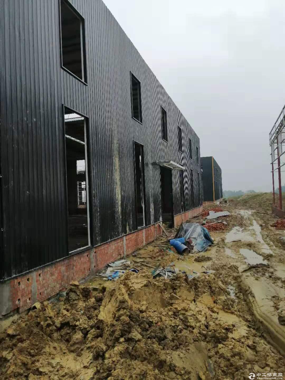 钢结构厂房出售全新厂房50年产权-图4