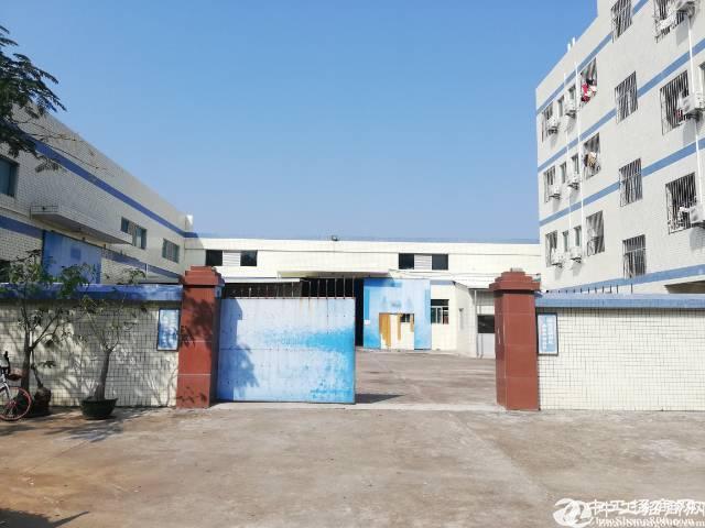 惠阳新圩厂房出售小独院单一层厂房3300平方米