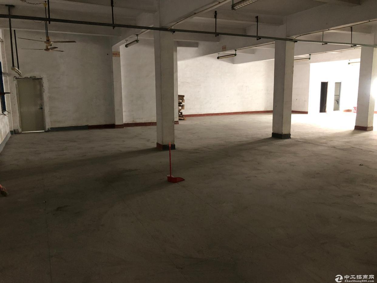 坪山坑梓吉祥路 厂房二楼460平方 仓库出租 有电梯
