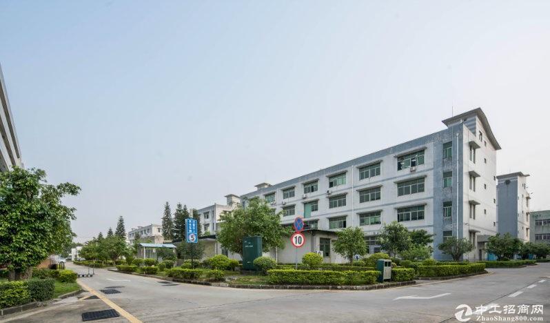 广东中山大涌工业园8000平标准地坪漆厂房仓库出租可300平起分租