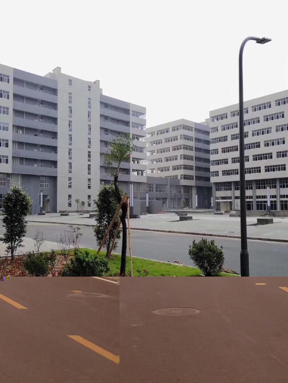 平湖开发商直售临深全新独立红本厂房380至1万50年产权可按揭