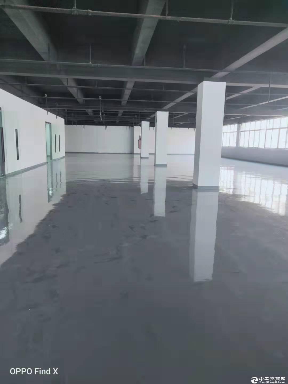 南山区西丽大学城地铁口3520平厂房出租(可做办公研发仓库