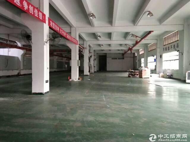 高新战略红本一楼厂房仓库1000平出租可分租可办环评