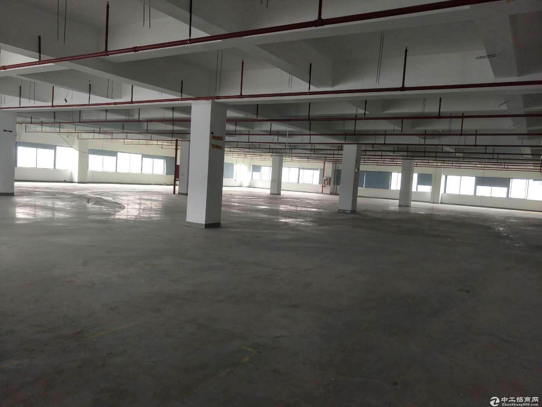 南山西丽中兴工业园3万平方仓库厂房出租200分租带装修求租可分租