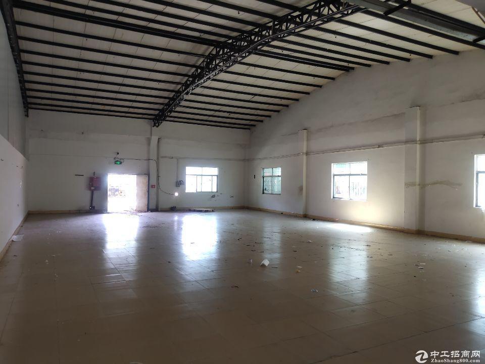坑梓秀新 新出一楼钢构厂房980平出租,滴水7米