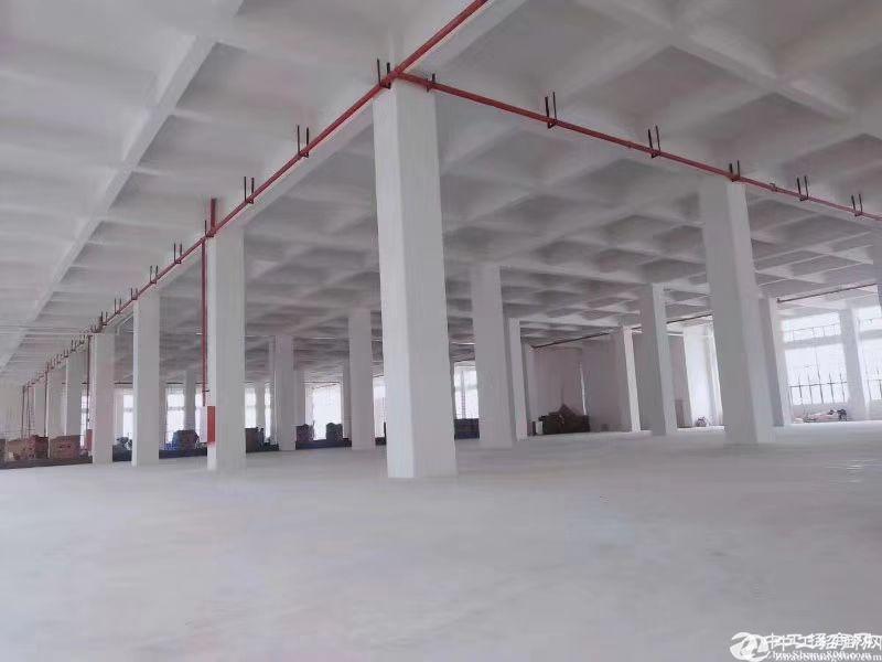 广州市黄埔区占地40.5亩国有证厂房出售.已做好三通一平