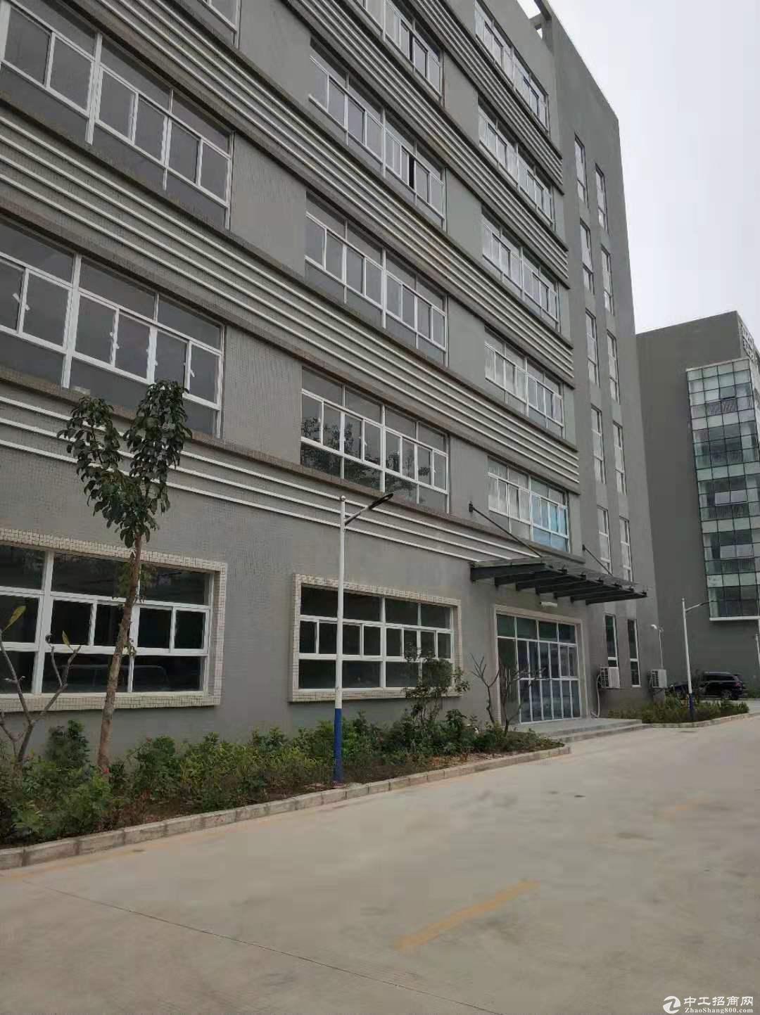 红本独门独院数据库,仓库盐田港实用面积11000平米