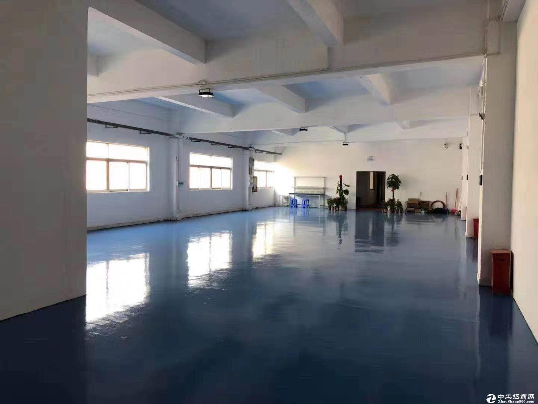 坪山原房东红本厂房楼上800平方出租有装修电梯证件齐全-图2