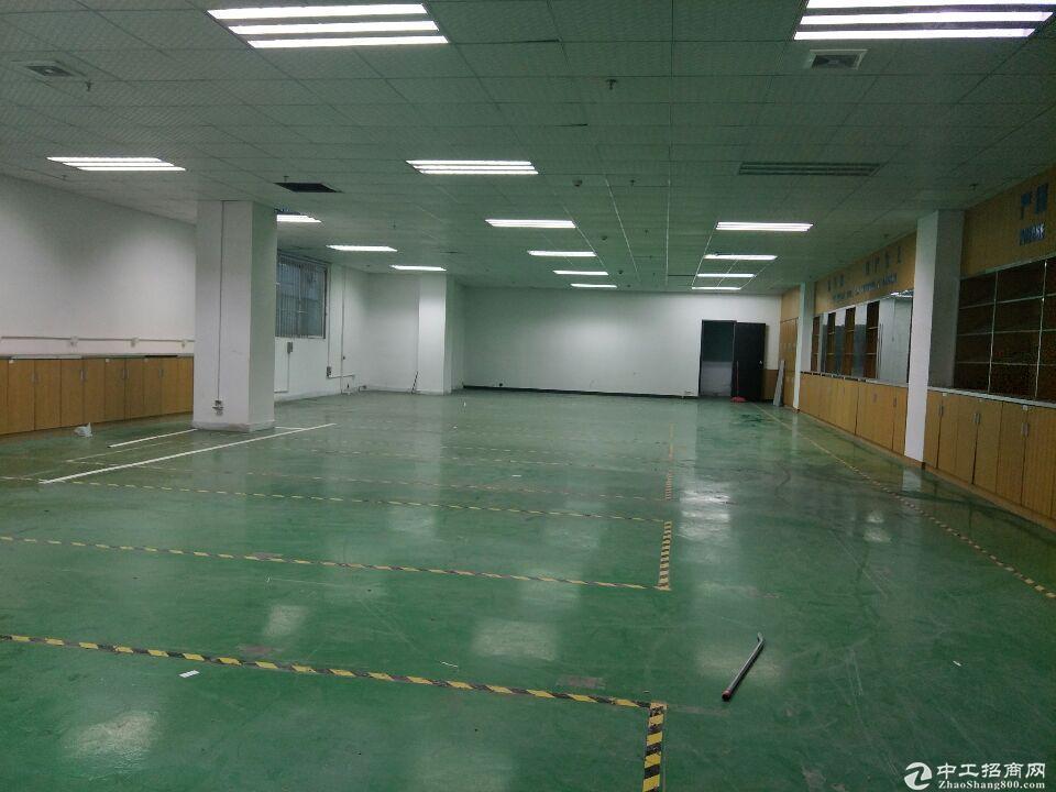 龙岗大运工业园新出一楼375平厂房仓库出租,大小可分租