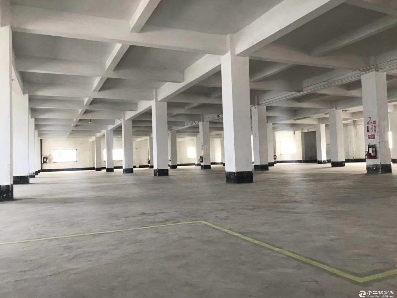 白云区整栋出租4000方厂房仓库