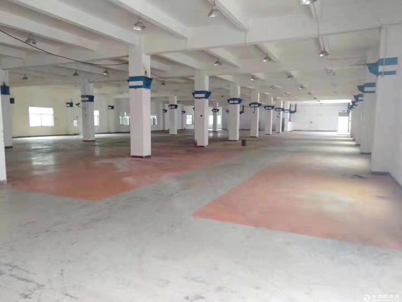 江门古井镇占地131亩建筑28197m²国有双证厂房出售图片1