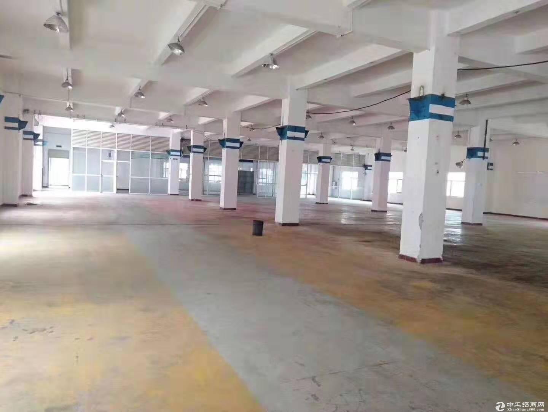 江门古井镇占地131亩建筑28197m²国有双证厂房出售