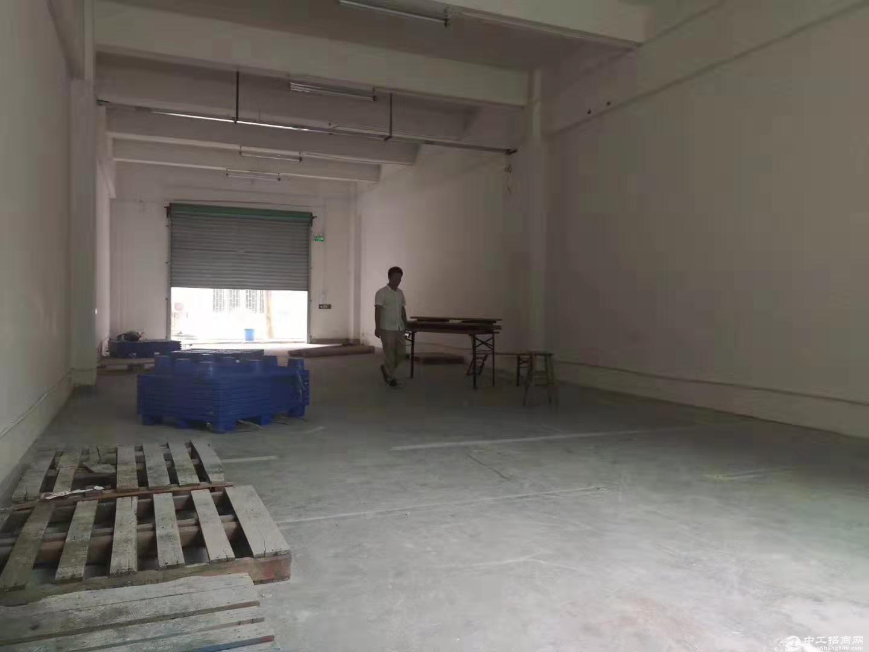 茶光地铁口一楼260平标准厂房出租水电齐全