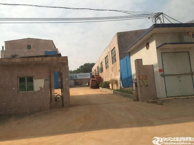 高明区荷城独院位置偏单一层厂房仓库1000平方出租