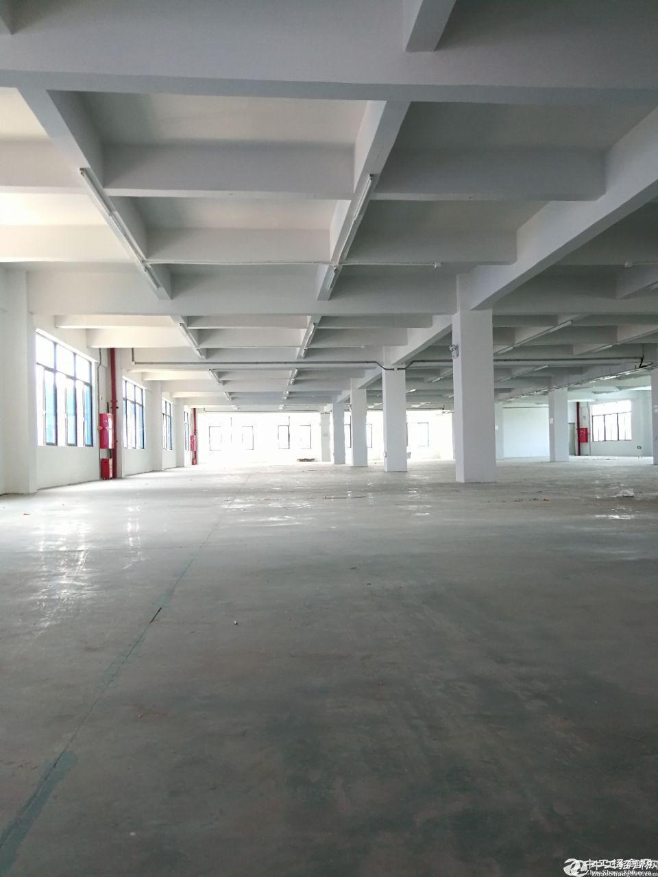 花都 新华 原房东独栋厂房仓库3800平出租,可办环评