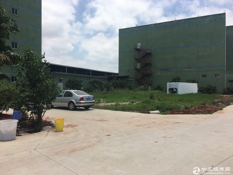 现成恒温仓库冷库,有卸货台,深圳坪山5000方标准厂房招租