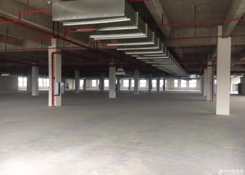 九龙坡金凤工业园区灼映标准厂房1250平米起租