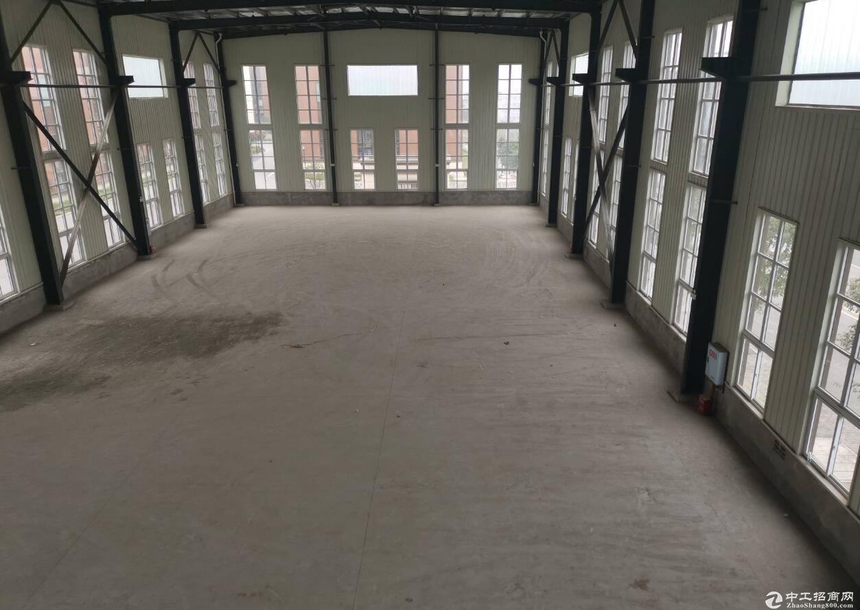 出租九龙坡区九龙园C区单层钢结构2400平米