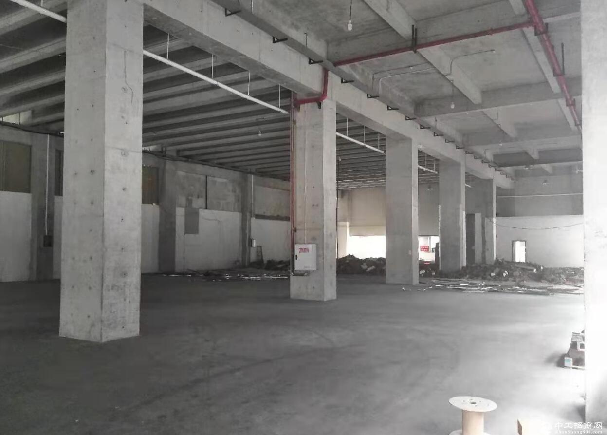 西永多功能房屋1000㎡出租,可做厂库房门面