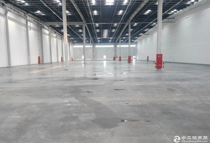沙坪坝区11万方大型电商物流园对外招商,交通便利
