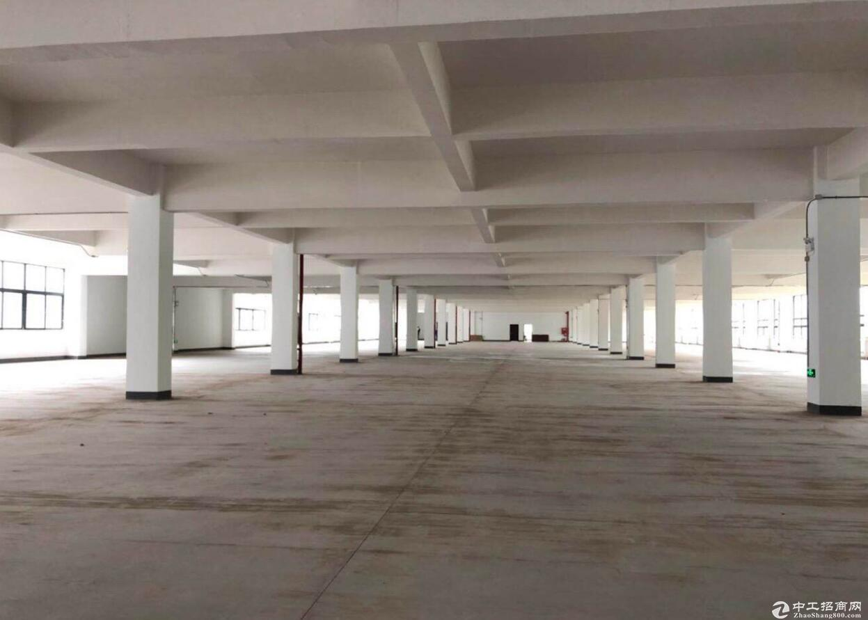 鱼复工业园 楼上的厂房  两部电梯 可以分