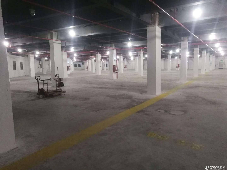 横岗物流仓库20000平招租 带卸货平台 消防喷淋